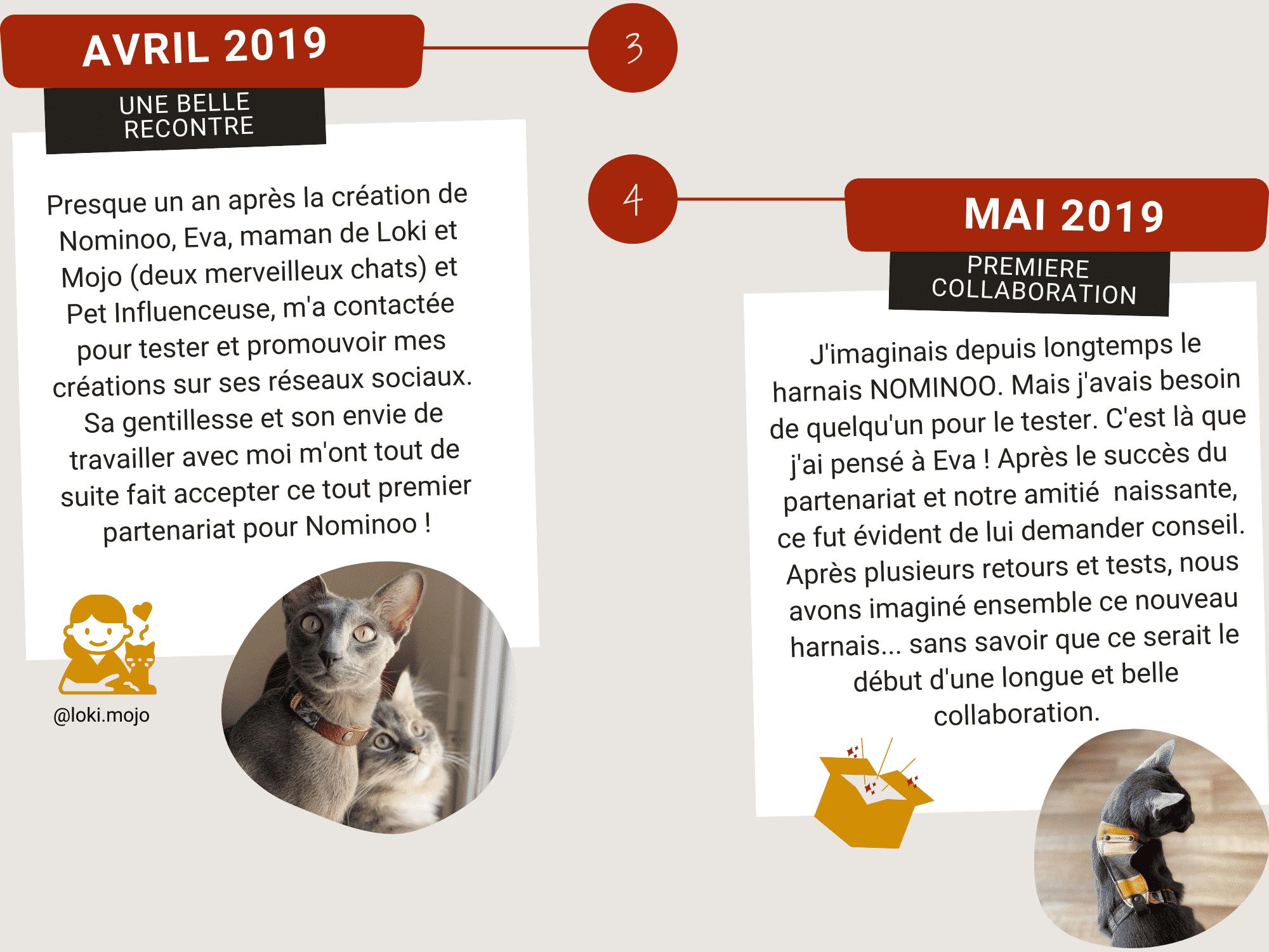 A propos de Nominoo en Avril 2019 et mai 2019. Rencontre avec Eva, maman de Loki et Mojo les égéries. Ainsi que la première collaboration.